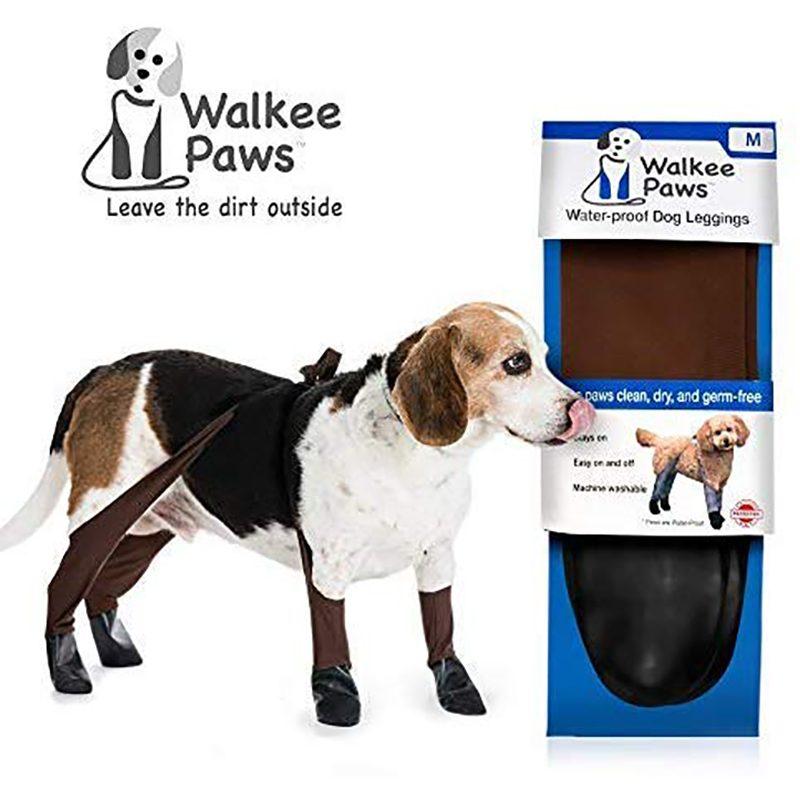 dog leggings