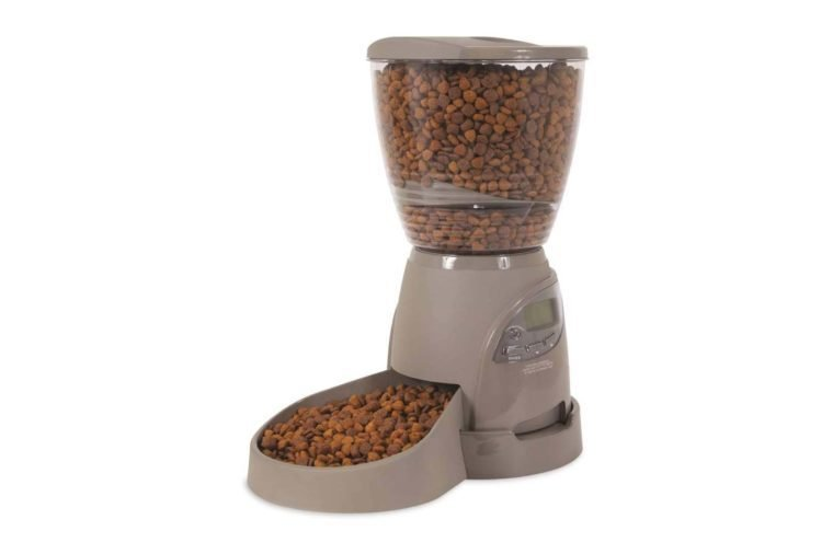 petmate portion right dog feeder