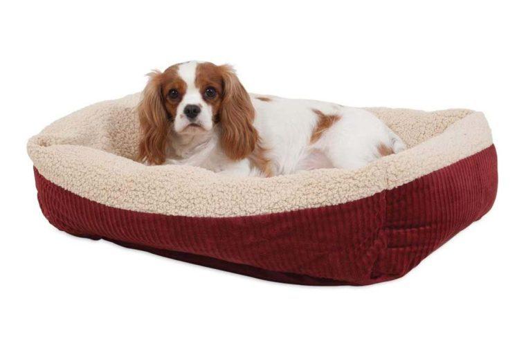 pet self warming bed