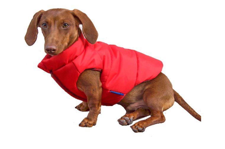 django puffer dog jacket