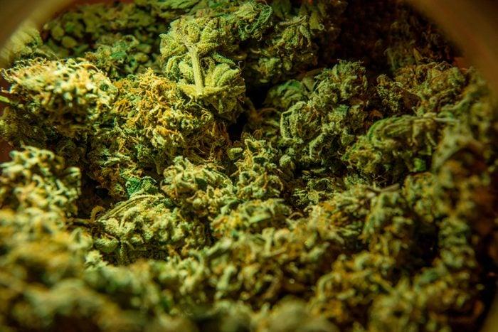 Detail of weed