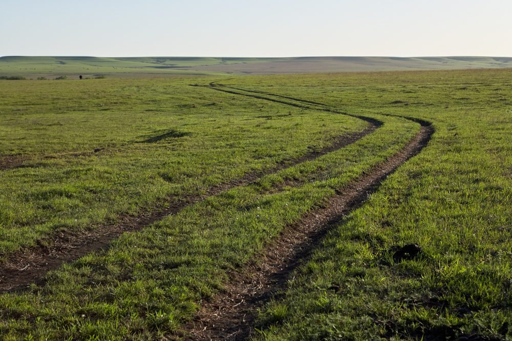 Winding dirt track through farm fields and green pastures in a flat open rural landscape in Kansas USA