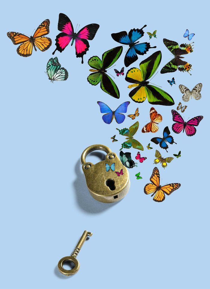 lock and key with butterflies