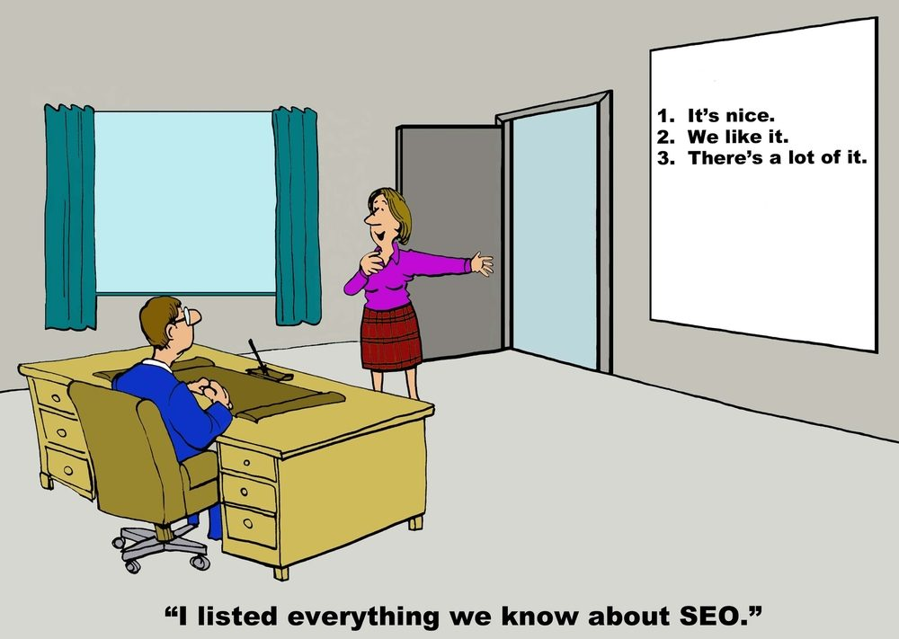 Business cartoon of businesswoman saying, 'I listed everything we know about SEO' 'It's nice, we like it, there's a lot of it'.