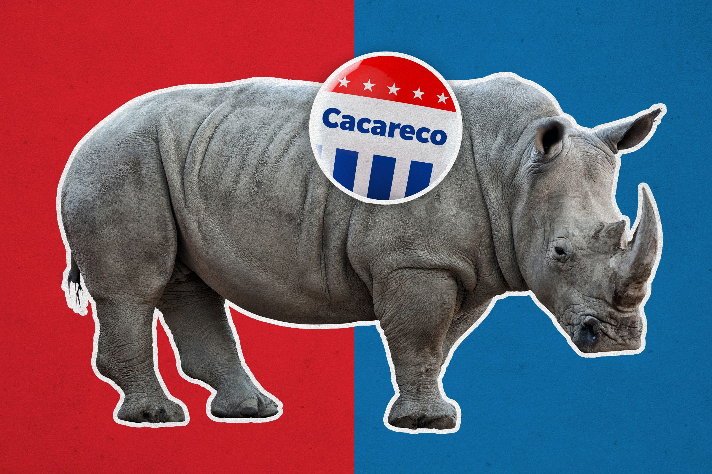 Rhinoceros with campaign button