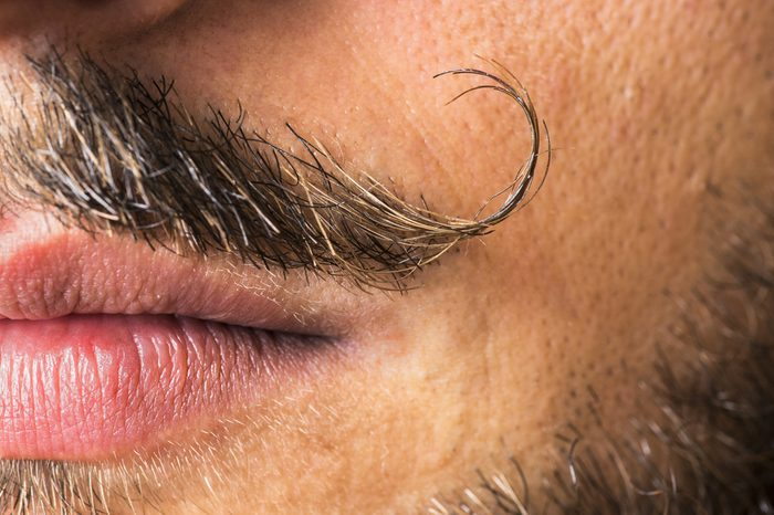 Curled and sexy mustache close up with sexy lips and beard.