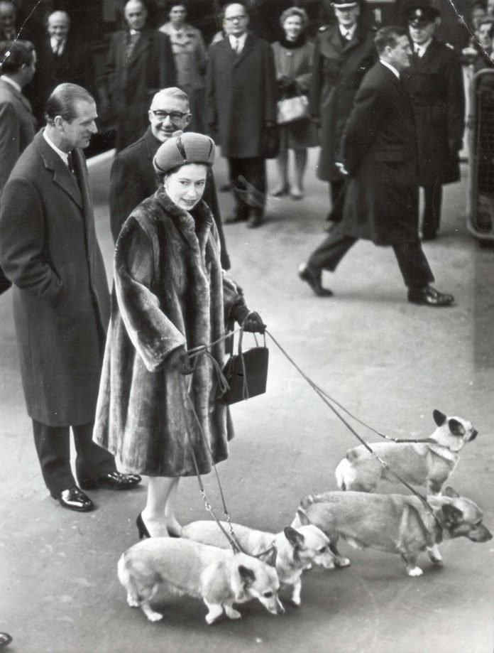 Queen Elizabeth. Dogs. Picture Shows The Queen Arrives Back At Liverpool Street With Her Corgis.