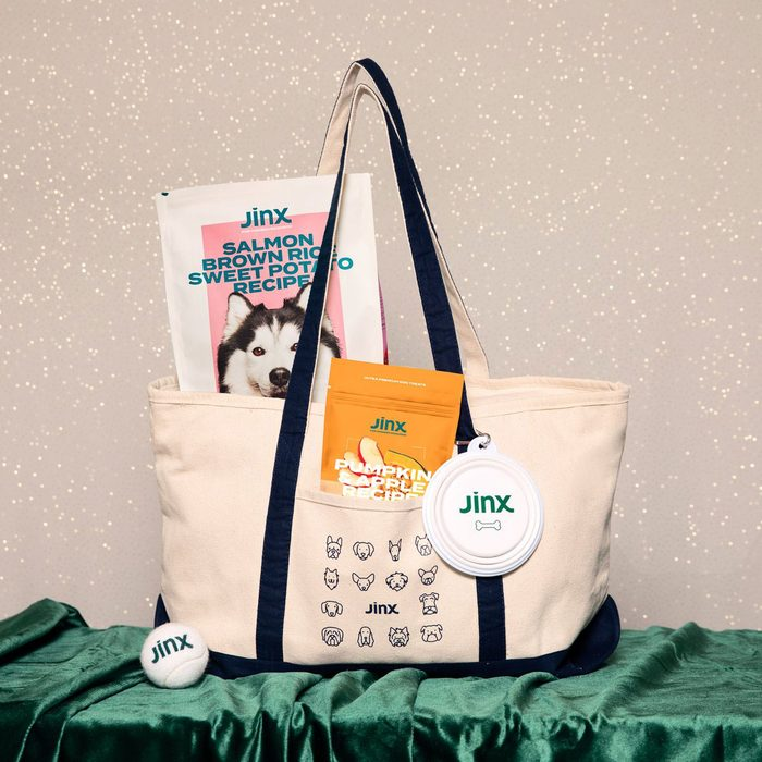Jinx Weekender Wag Bag