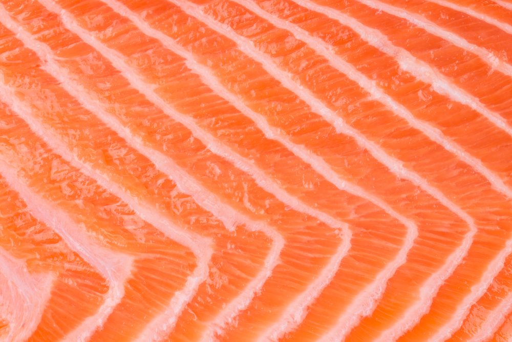 Close up of salmon fillet. Macro. Whole background.