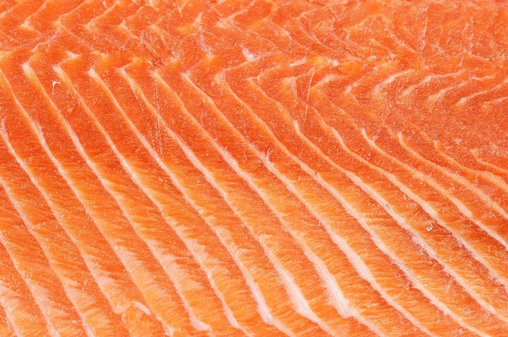 fresh salmon fillet background