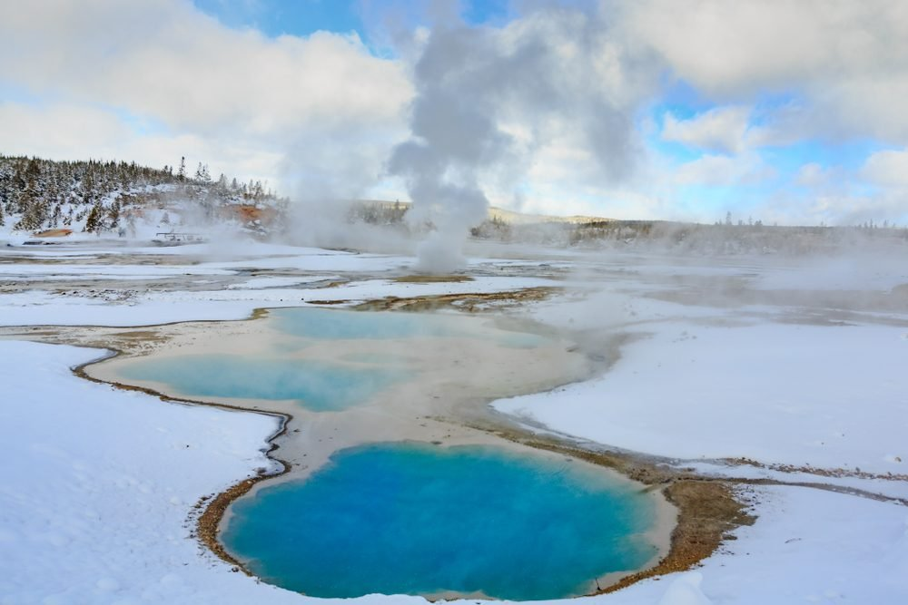 Colloidal Geothermal Pool In Yellowstone National Park