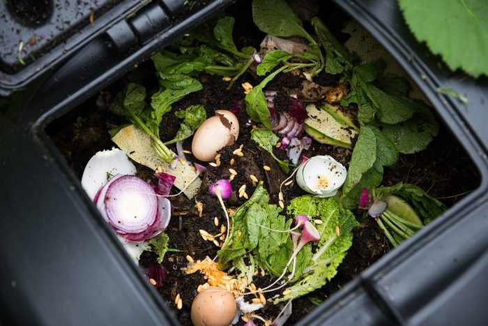 Compost Bin with Food Scraps and Grass Cuttings