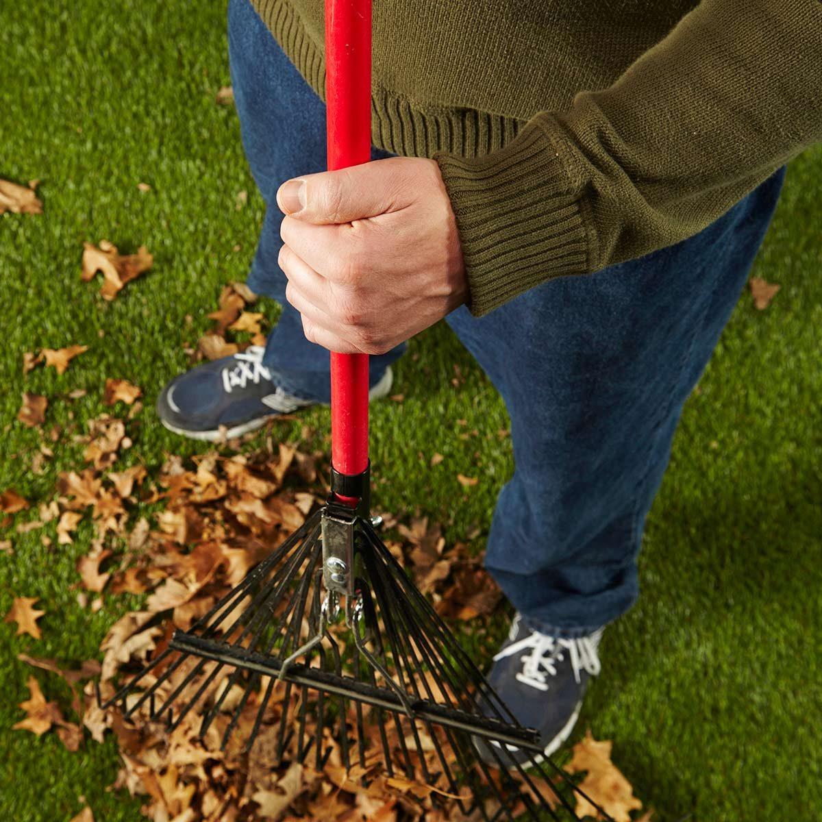 blister buster raking leaves
