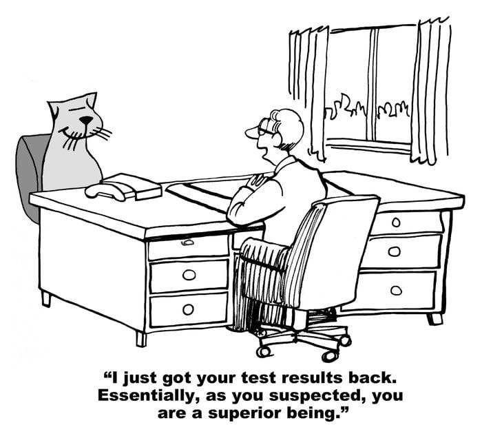 cat medical cartoon