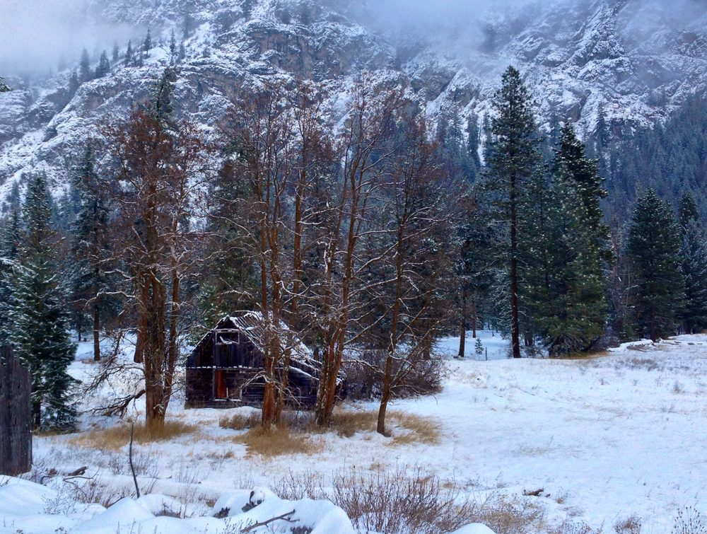 Small cabin in the woods, Methow Valley, WA.