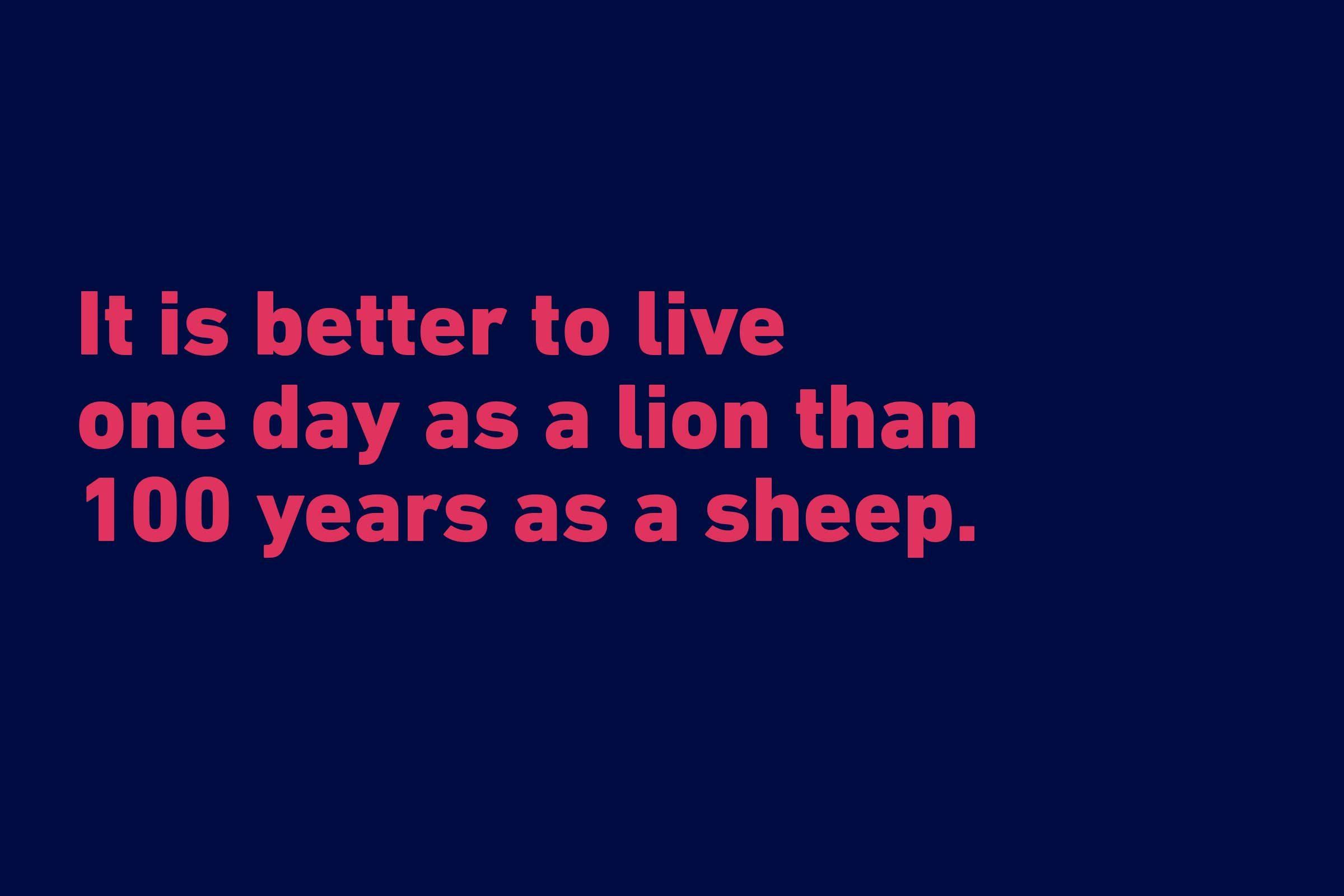 Donald Trump funny quote