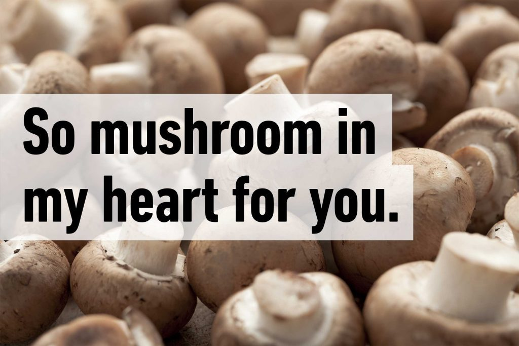 So mushroom in my heart for you.