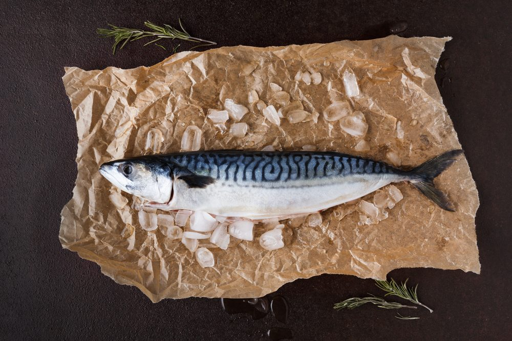 Fresh mackerel fish in ice on craft paper at black background. Organic cooking ingredients for seafood restaurant. Top view, copy space