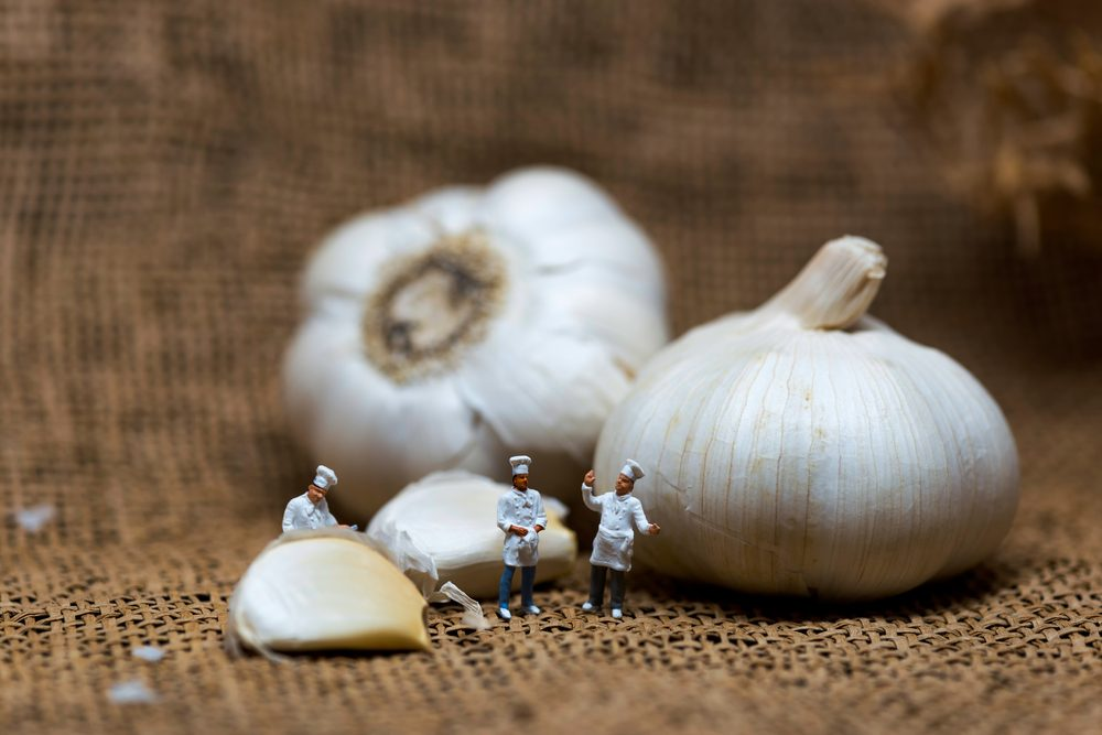 Cooking process concept. Miniature cooks with garlic bulb. Color tone tuned. Macro photo