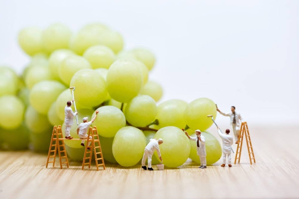 Group of miniature people washing bunch of white grape.
