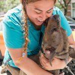 15 Pet Reunions That Will Melt Your Heart