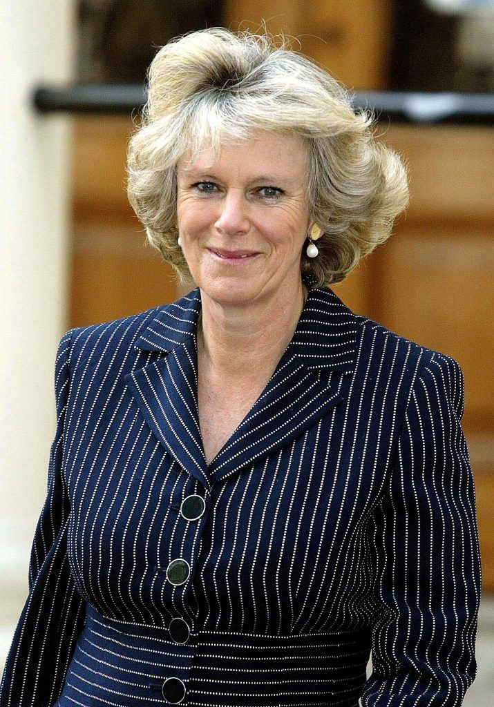 CAMILLA PARKER BOWLES AT OSTEOPOROSIS SOCIETY EVENT, ICA, LONDON, BRITAIN - 02 MAY 2002