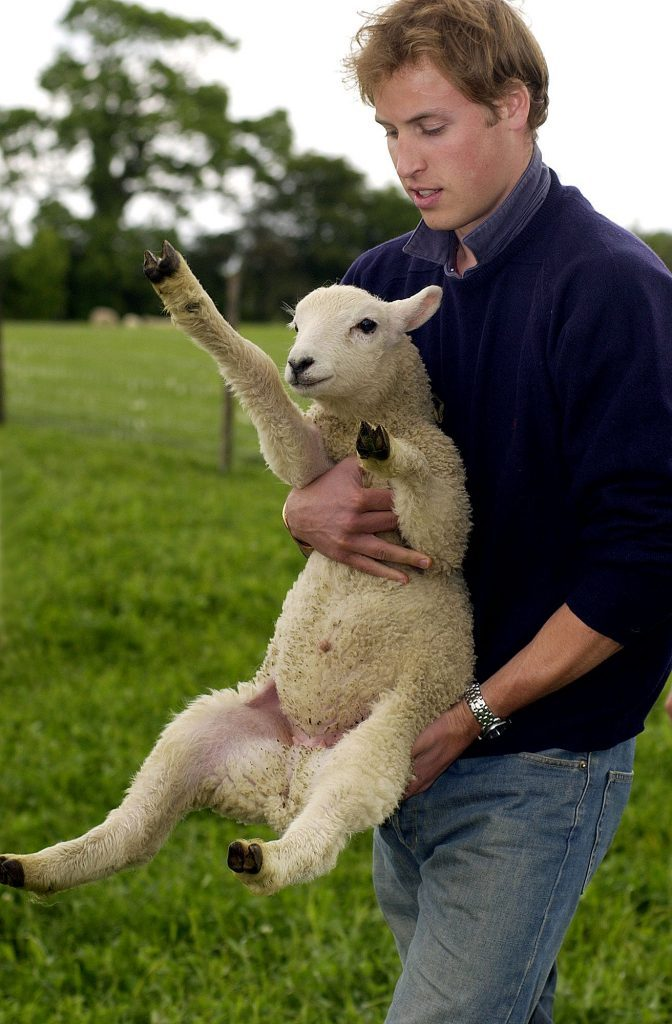 Royal photocall at Duchy Home Farm, Gloucestersire, Britain - 29 May 2004