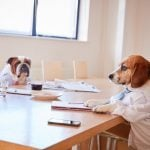 12 Adorable Pictures of Dogs Dressed for Work