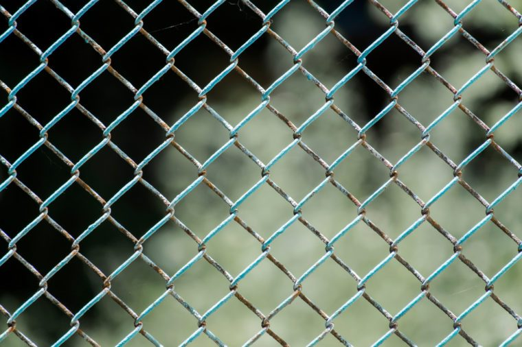 Chain-wire fence. Fence made of steel wire mesh. In places, the rusted wire mesh steel with shabby paint
