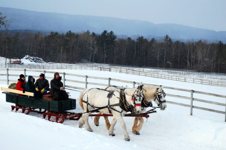Stockbridge, MA, USA March 28 A horse drawn sleigh tours the country side during a snow fall in Stockbridge, Massachusetts
