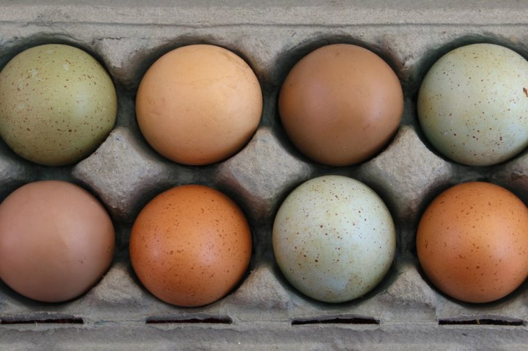 Over head view of colorful farm fresh eggs in carton
