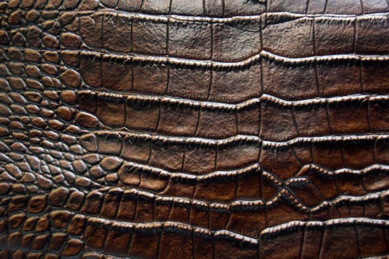 luxury brown crocodile leather texture