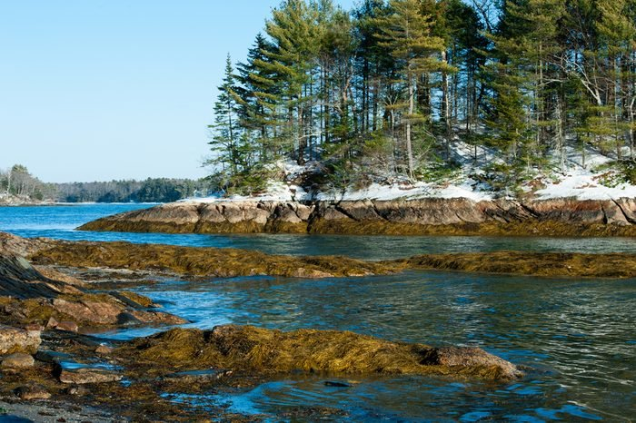 Wolfe's Neck State Park, Freeport, Maine in winter