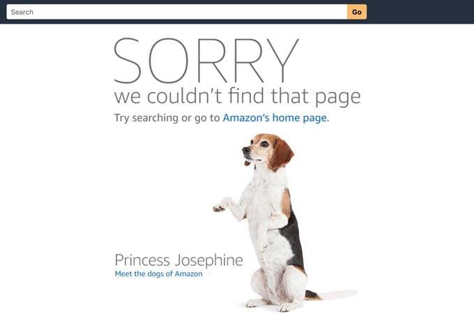 josephine dog