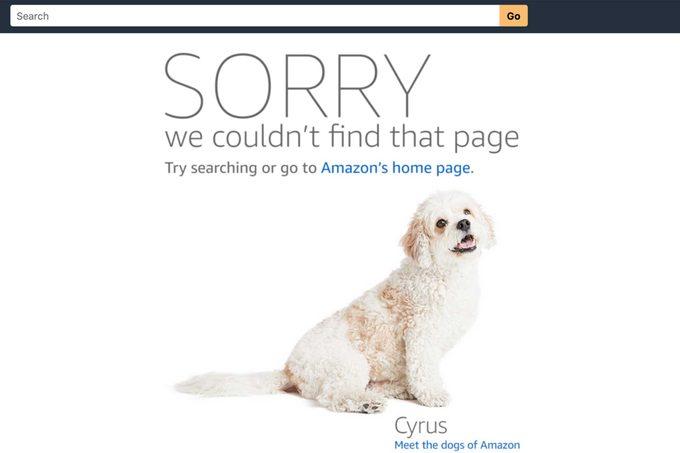 cyrus dog