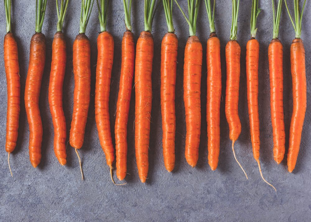 Fresh raw whole carrots on gray betonlook background. Rustic style.Top view. Flat lay.