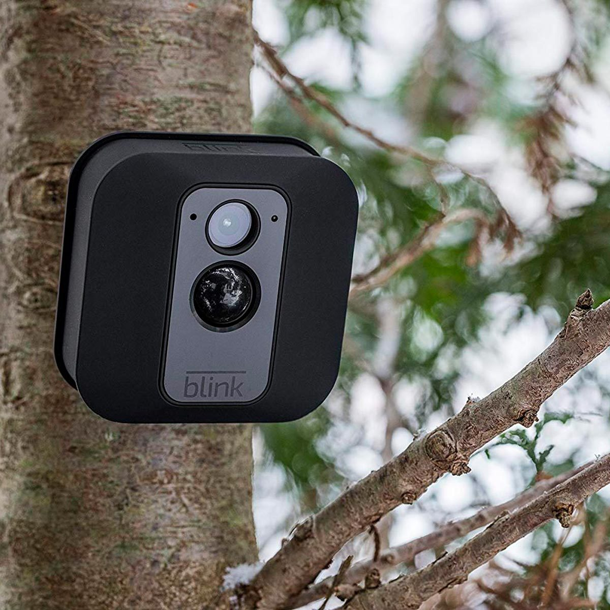 12 best-reviewed home security cameras | family handyman