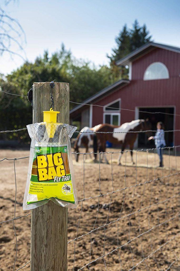 big bag fly trap