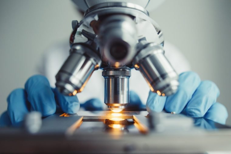 Close up of examining of test sample under the microscope in laboratory.