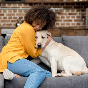 15 Everyday Habits of Great Dog Owners