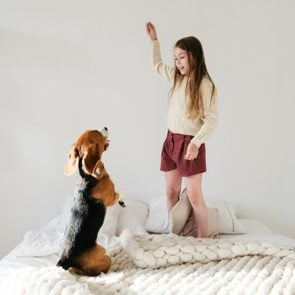young caucasian girl playing with her puppy beagle dog