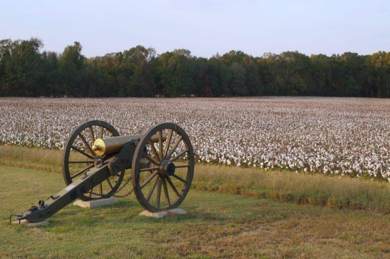 Cannon in civil war park