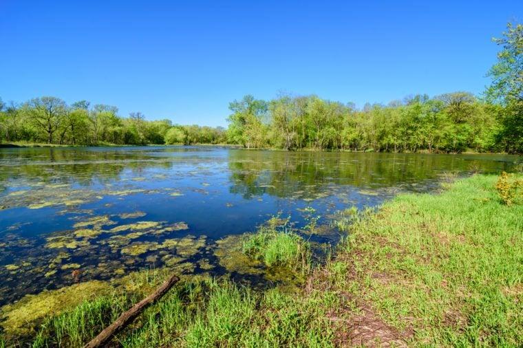 Spring in Waterloo, Iowa / Spring in Iowa