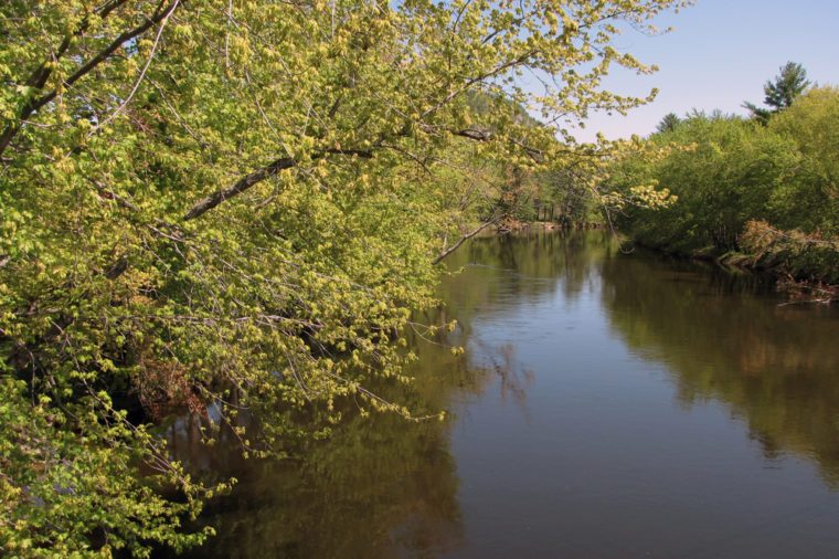 This is a serene view of the Saco River in Maine, on a lazy summer morning.