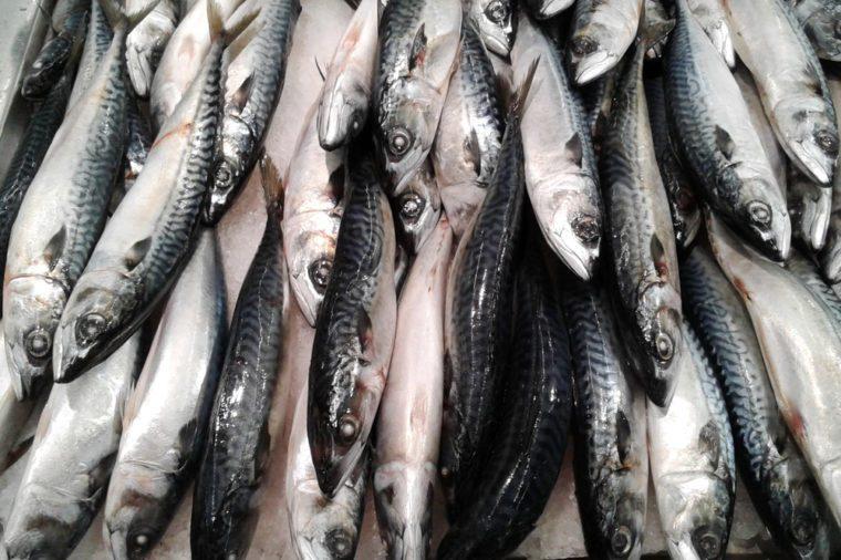 Fresh mackerel fish at the market. food