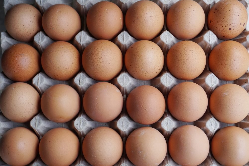 Group of fresh eggs in pater tray