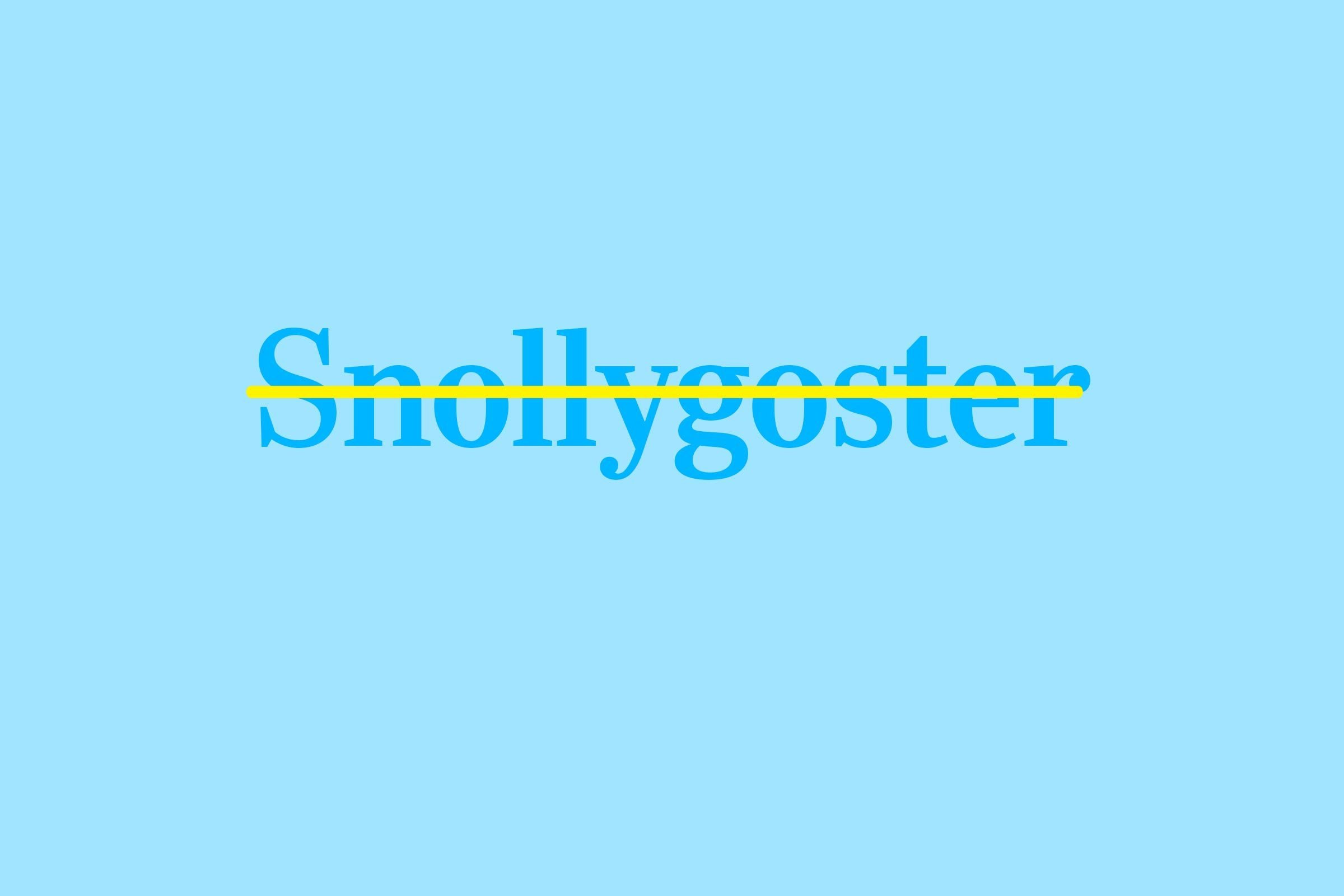 snollygoster