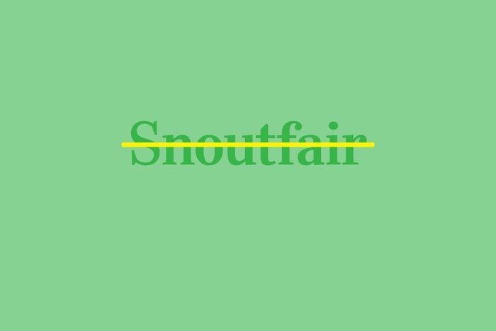 snoutfair