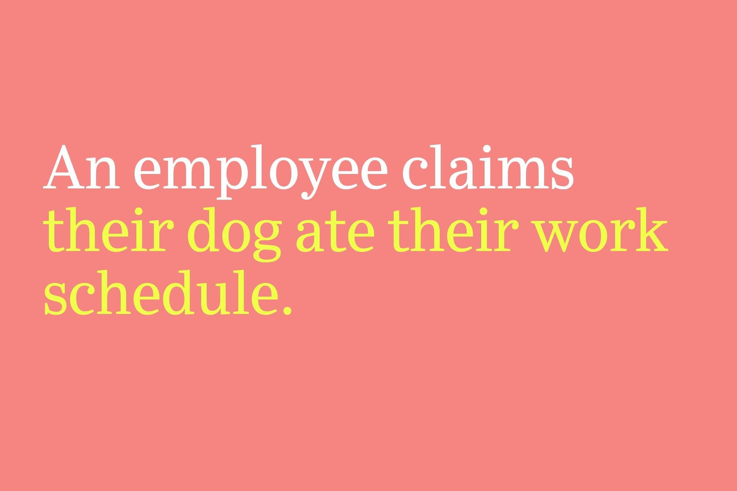 their dog ate their work schedule