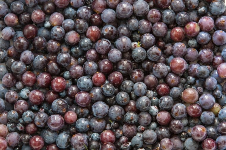 Concord Grapes Background
